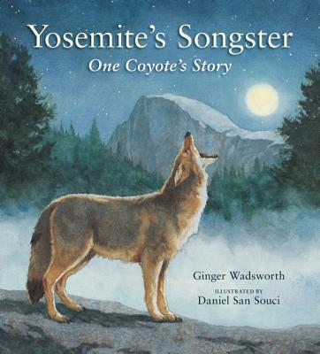 Yosemite's Songster By Wadsworth, Ginger/ San Souci, Daniel (ILT)